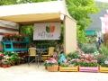 bazar-huerto-01.jpg