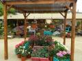 bazar-huerto-09.jpg